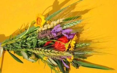 Hoje é o dia da Espiga – Quinta feira da Ascensão