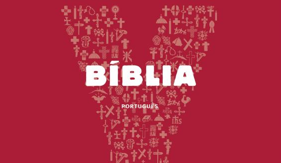 «Querem fazer-me feliz? Leiam a Bíblia!» – Papa Francisco na «Bíblia Jovem Youcat»