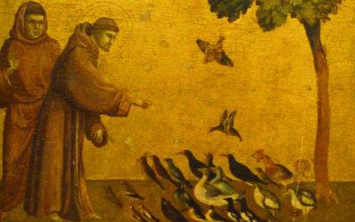 Semana «Laudato Si» – Um convite do Papa Francisco